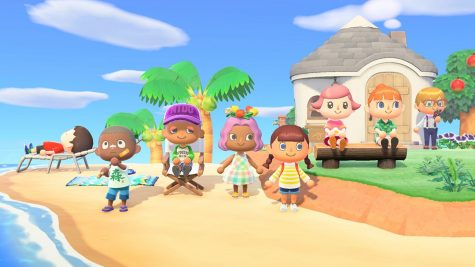 Custom characters of Animal Crossing: New Horizons