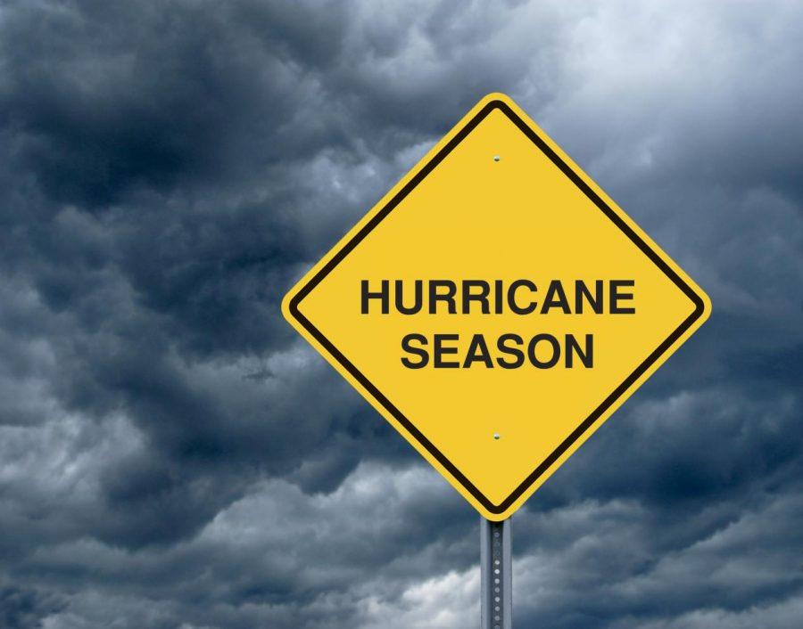The Unpredictable Hurricane Season